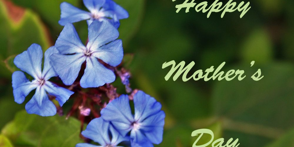 MothersDayBlueGreeting